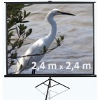Projektora ekrāns 3m 2,4x2,4 noma*